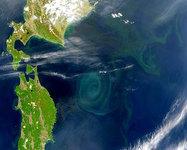 Remolinos Gigantes en el Mar (400 kilómetros de diámetro)